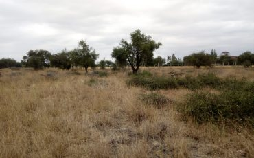 LAND FOR SALE – KITENGELA KAJIADO COUNTY